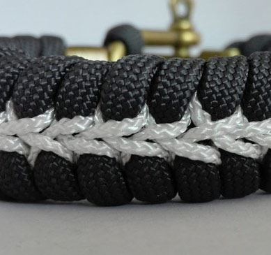 Wolfs spine with stitch